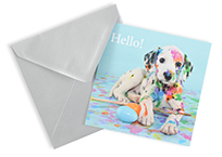 Photography Greeting Cards