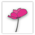 printed.com has changed its logo for Remembrance Day