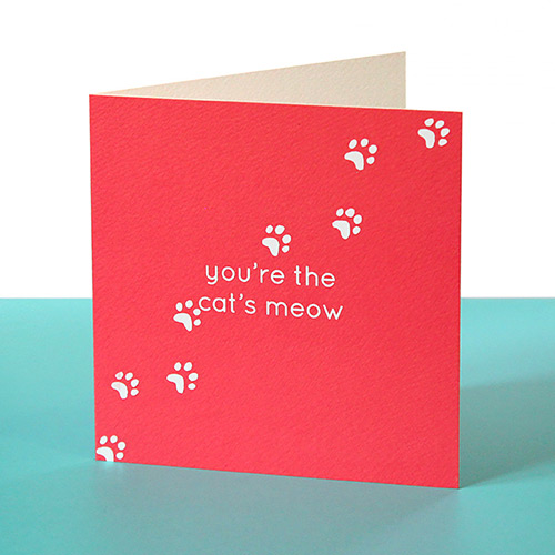 funny valentines card cats meow