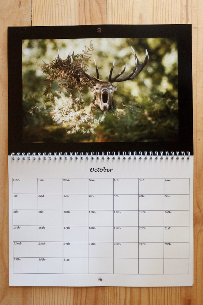 Friday's Favourites: Happy Black Friday! Calendars by Ed Brown